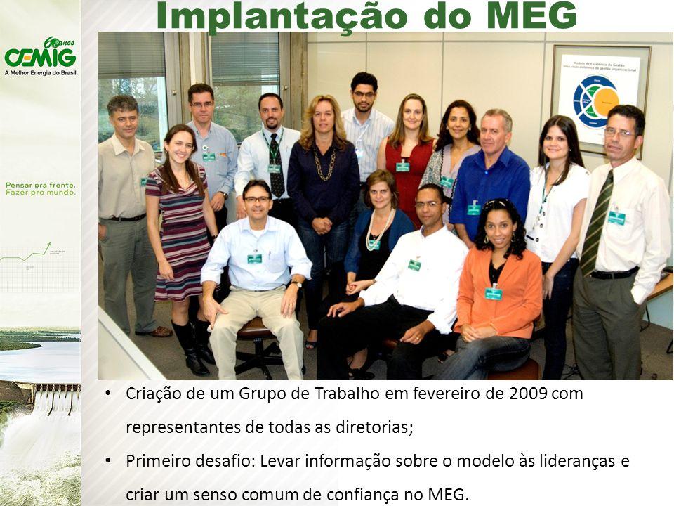 Criação de um Grupo de Trabalho em fevereiro de 2009 com representantes de todas as diretorias; Primeiro desafio: Levar informação sobre o modelo às lideranças e criar um senso comum de confiança no MEG.