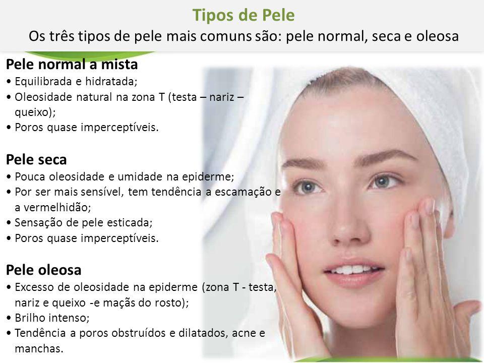 Pele normal a mista Equilibrada e hidratada; Oleosidade natural na zona T (testa – nariz – queixo); Poros quase imperceptíveis. Pele seca Pouca oleosi
