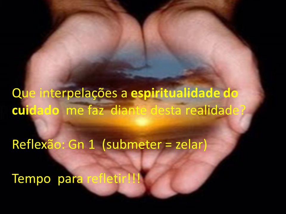 Que interpelações a espiritualidade do cuidado me faz diante desta realidade? Reflexão: Gn 1 (submeter = zelar) Tempo para refletir!!!