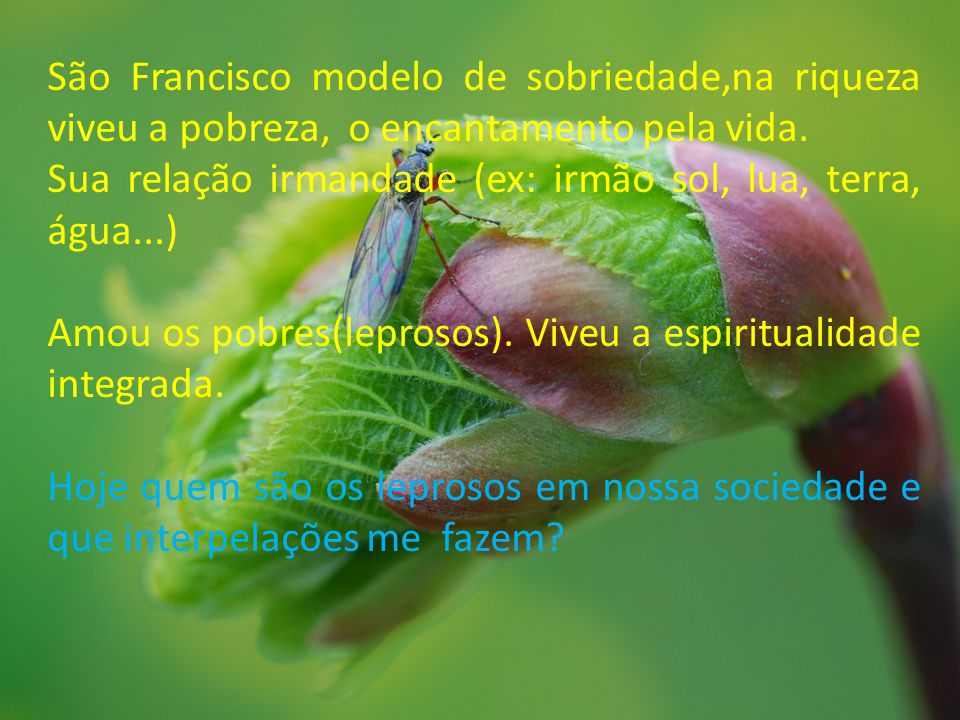São Francisco modelo de sobriedade,na riqueza viveu a pobreza, o encantamento pela vida. Sua relação irmandade (ex: irmão sol, lua, terra, água...) Am