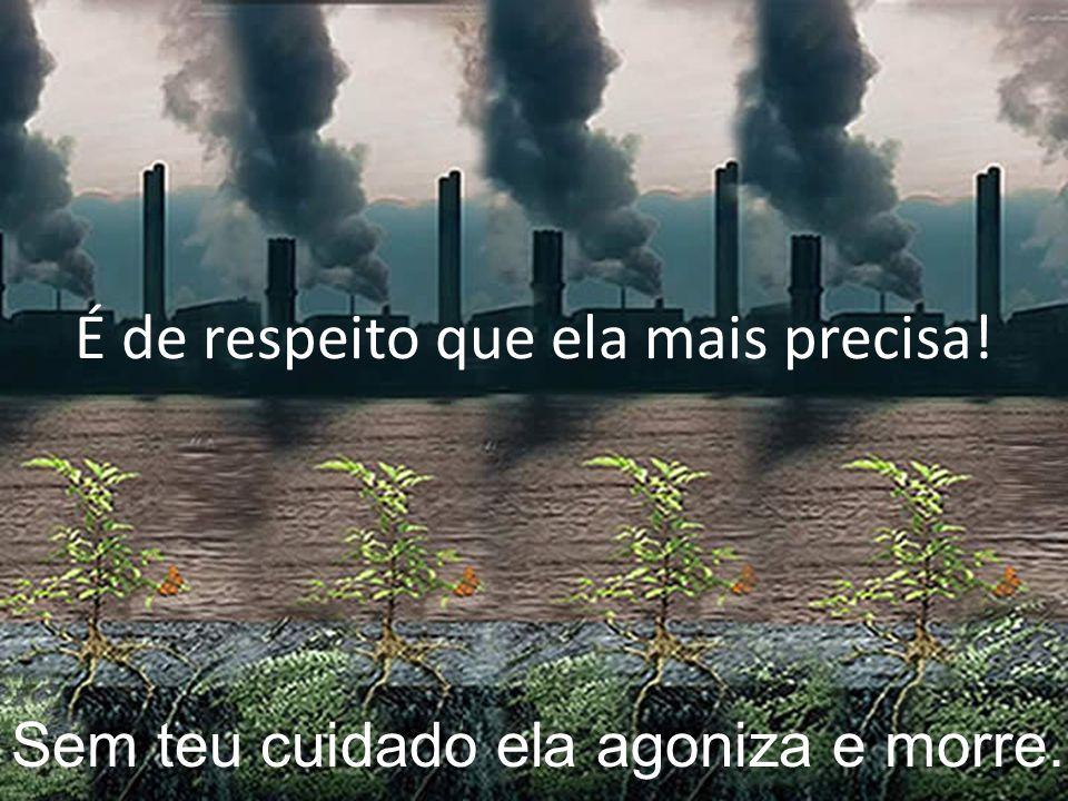 A terra é mãe, é criatura viva Também respira, se alimenta e sofre.