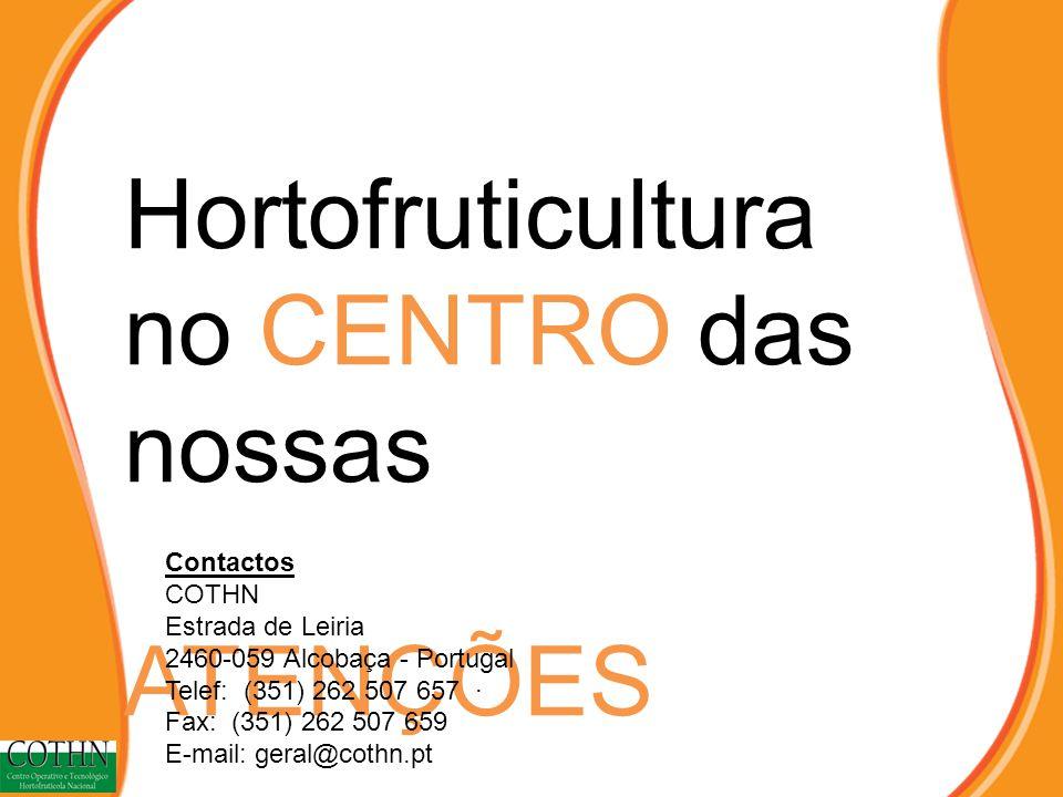 Hortofruticultura no CENTRO das nossas ATENÇÕES Contactos COTHN Estrada de Leiria 2460-059 Alcobaça - Portugal Telef: (351) 262 507 657 · Fax: (351) 262 507 659 E-mail: geral@cothn.pt
