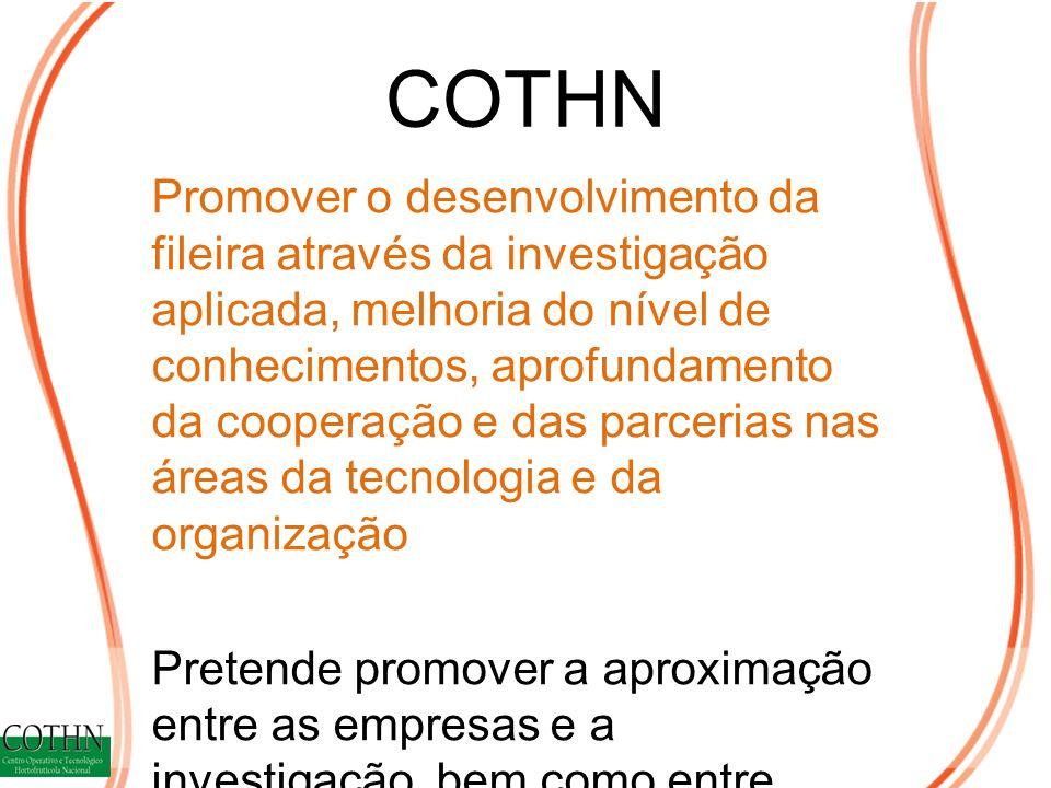 COTHN Promover o desenvolvimento da fileira através da investigação aplicada, melhoria do nível de conhecimentos, aprofundamento da cooperação e das parcerias nas áreas da tecnologia e da organização Pretende promover a aproximação entre as empresas e a investigação, bem como entre entidades públicas e privadas.