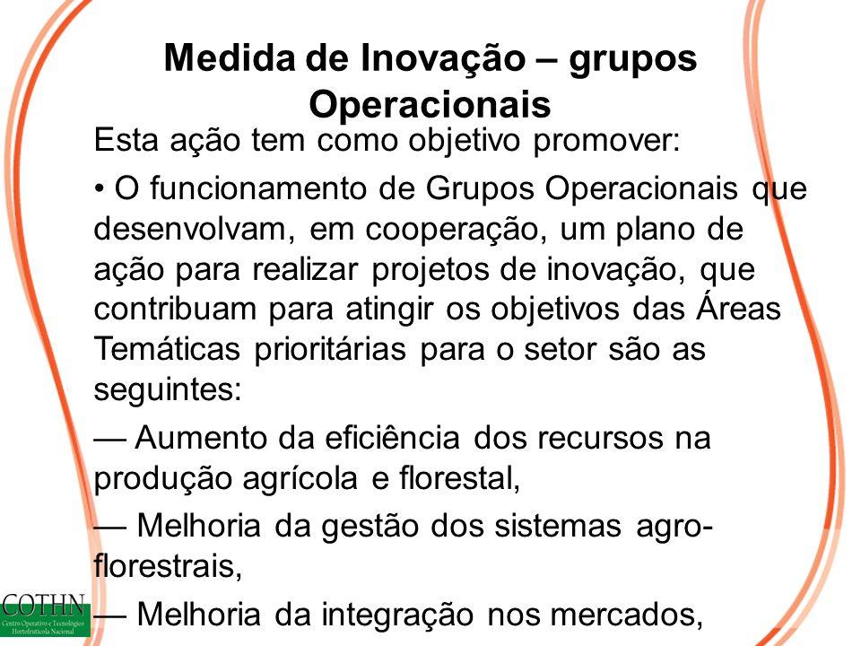 Medida de Inovação – grupos Operacionais Esta ação tem como objetivo promover: O funcionamento de Grupos Operacionais que desenvolvam, em cooperação,
