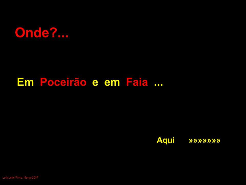 Onde?... Em Poceirão e em Faia... Aqui »»»»»»» Luís Leite Pinto, Março 2007