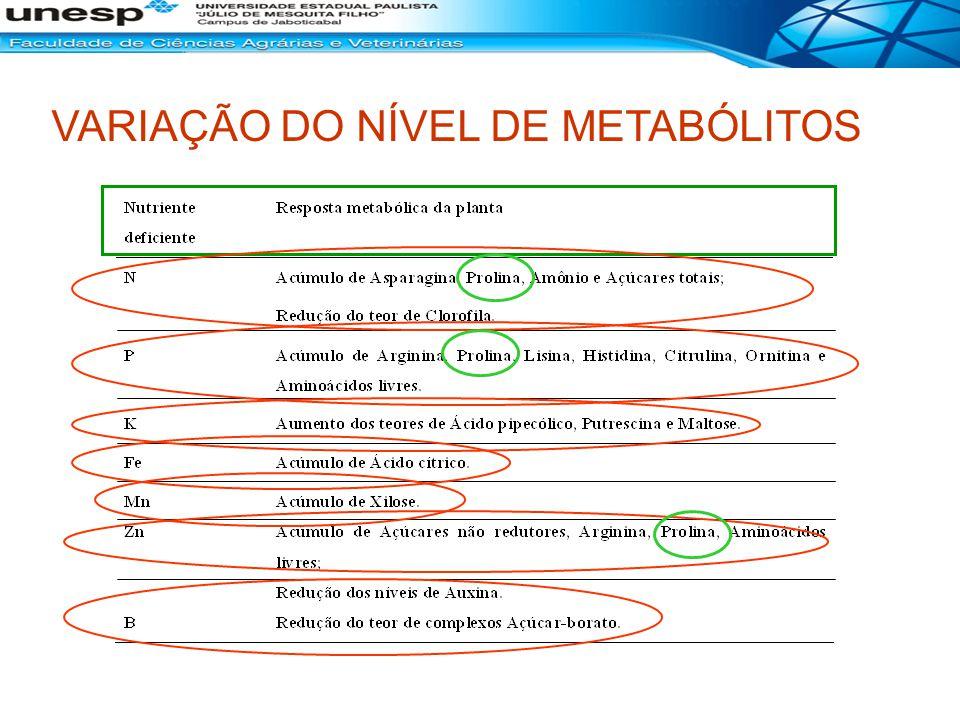VARIAÇÃO DO NÍVEL DE METABÓLITOS