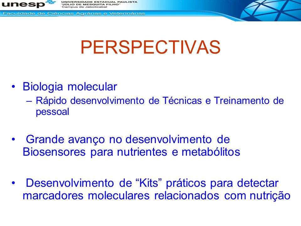 PERSPECTIVAS Biologia molecular –Rápido desenvolvimento de Técnicas e Treinamento de pessoal Grande avanço no desenvolvimento de Biosensores para nutr