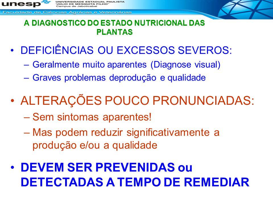 A DIAGNOSTICO DO ESTADO NUTRICIONAL DAS PLANTAS DEFICIÊNCIAS OU EXCESSOS SEVEROS: –Geralmente muito aparentes (Diagnose visual) –Graves problemas depr