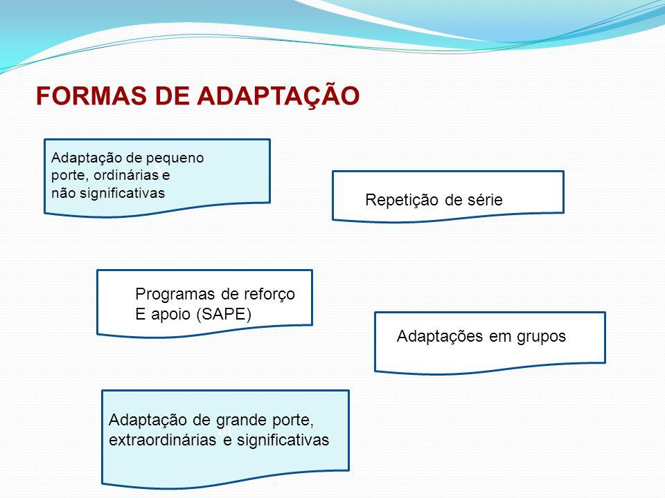 FORMAS DE ADAPTAÇÃO A m RE A Adaptação de pequeno porte, ordinárias e não significativas Repetição de série Programas de reforço E apoio (SAPE) Adapta