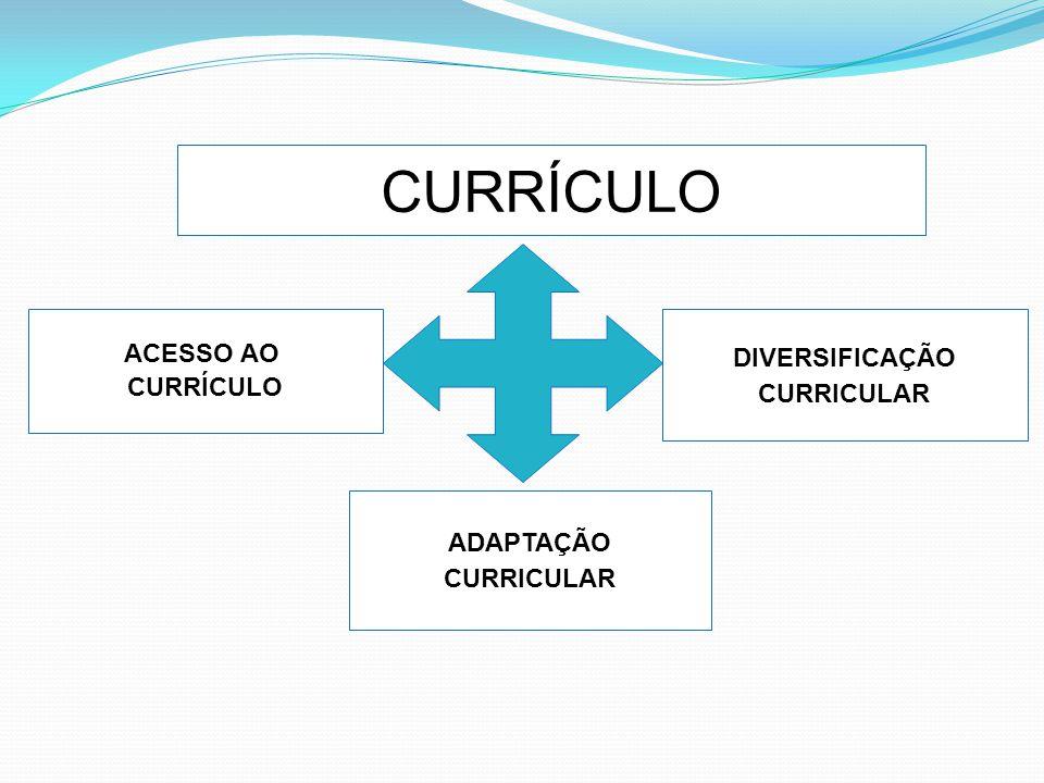 COMO FAZER A ADAPTAÇÃO Elementos do Plano de inclusão : Ações Competências de cada um Tarefas de responsabilidades Cronograma de metodologia Avaliação Critérios para adaptação individual: Partir sempre do currículo comum.