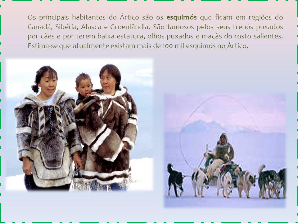 Os principais habitantes do Ártico são os esquimós que ficam em regiões do Canadá, Sibéria, Alasca e Groenlândia. São famosos pelos seus trenós puxado