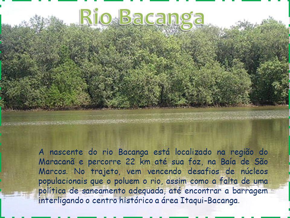 A nascente do rio Bacanga está localizado na região do Maracanã e percorre 22 km até sua foz, na Baía de São Marcos. No trajeto, vem vencendo desafios