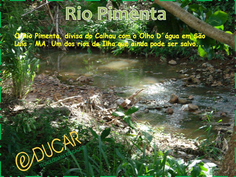 O Rio Pimenta, divisa do Calhau com o Olho D´água em São Luís – MA. Um dos rios da Ilha que ainda pode ser salvo...