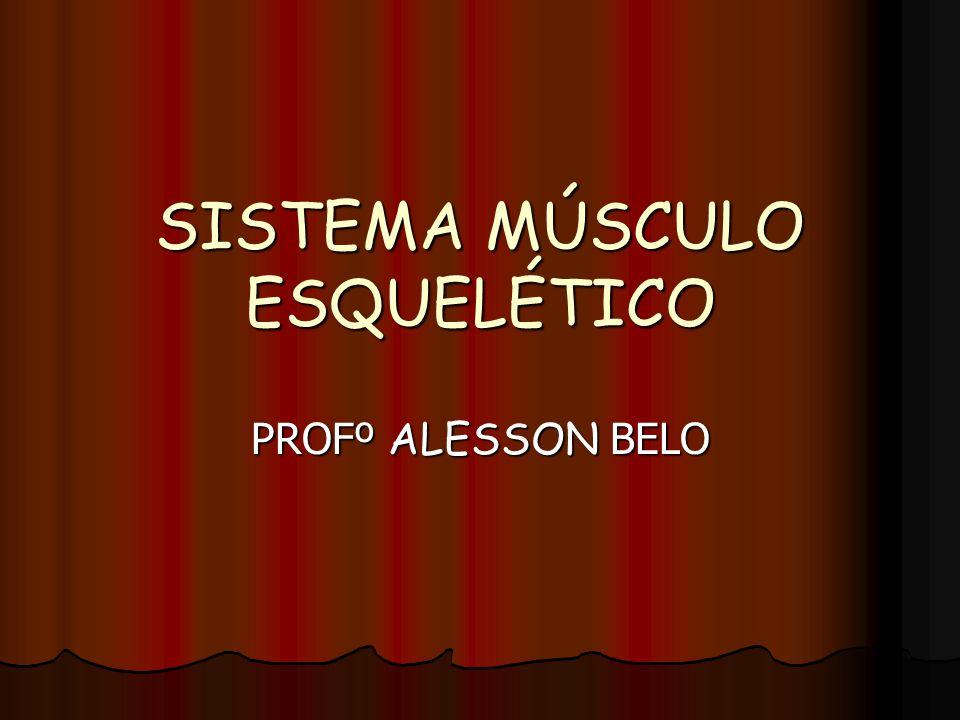 SISTEMA MÚSCULO ESQUELÉTICO PROFº ALESSON BELO