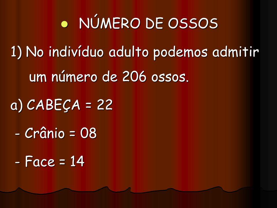 NÚMERO DE OSSOS NÚMERO DE OSSOS 1) No indivíduo adulto podemos admitir um número de 206 ossos. a) CABEÇA = 22 - Crânio = 08 - Crânio = 08 - Face = 14