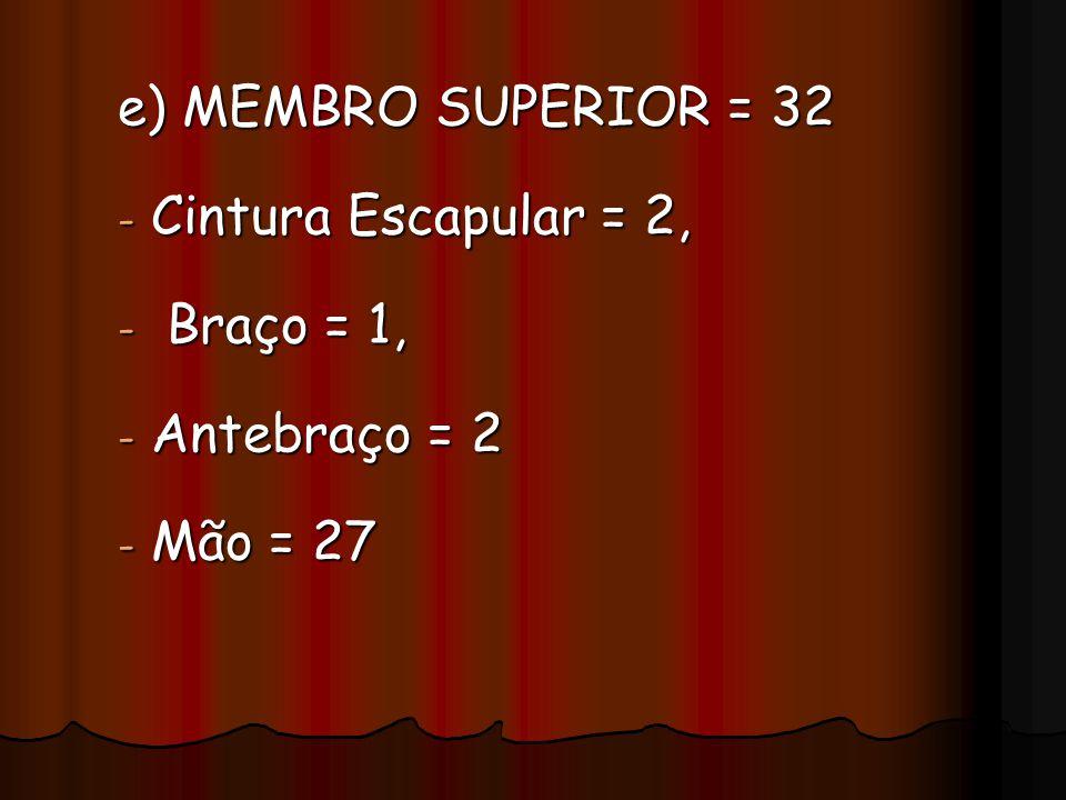e) MEMBRO SUPERIOR = 32 - Cintura Escapular = 2, - Braço = 1, - Antebraço = 2 - Mão = 27