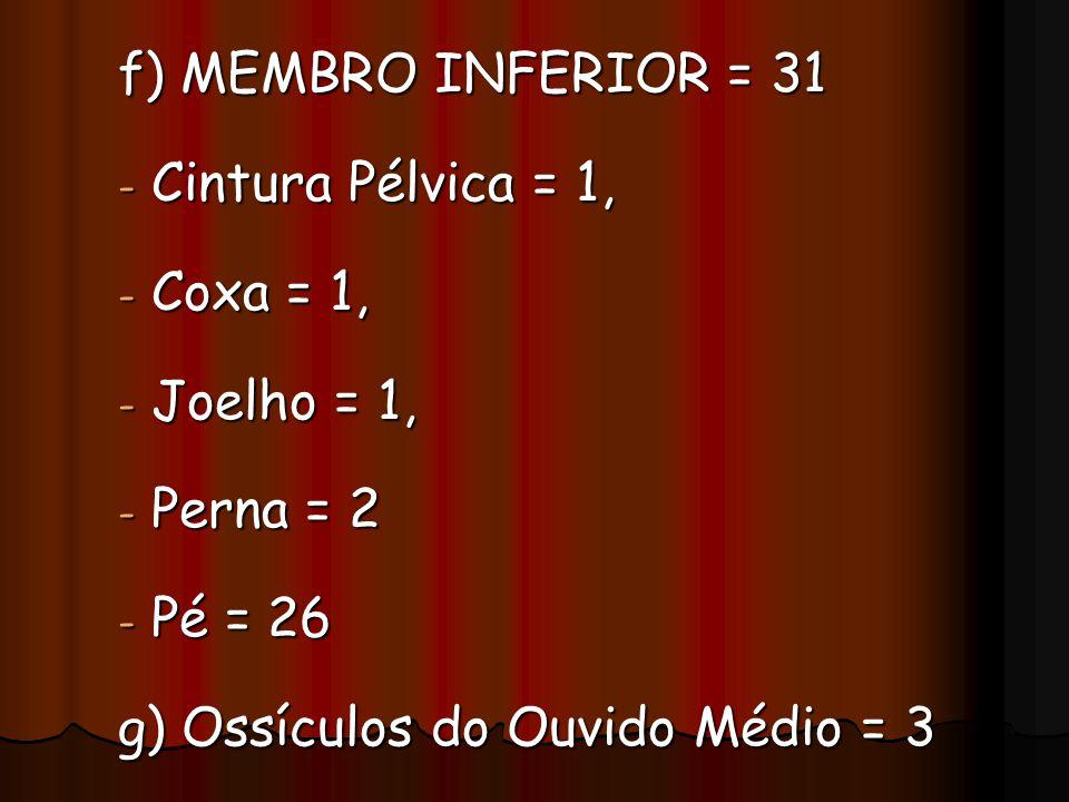 f) MEMBRO INFERIOR = 31 - Cintura Pélvica = 1, - Cintura Pélvica = 1, - Coxa = 1, - Joelho = 1, - Perna = 2 - Pé = 26 g) Ossículos do Ouvido Médio = 3