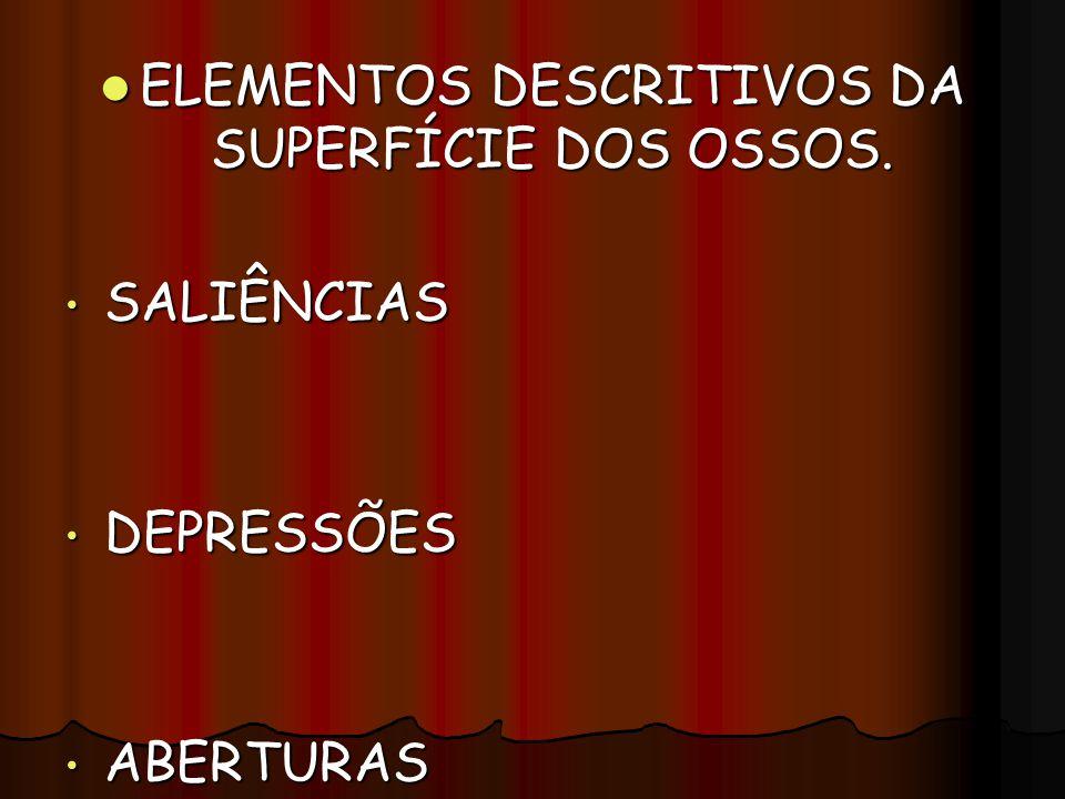 ELEMENTOS DESCRITIVOS DA SUPERFÍCIE DOS OSSOS. ELEMENTOS DESCRITIVOS DA SUPERFÍCIE DOS OSSOS. SALIÊNCIAS SALIÊNCIAS DEPRESSÕES DEPRESSÕES ABERTURAS AB