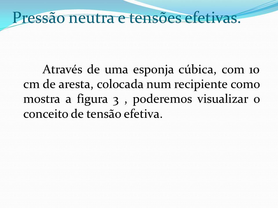 Através de uma esponja cúbica, com 10 cm de aresta, colocada num recipiente como mostra a figura 3, poderemos visualizar o conceito de tensão efetiva.