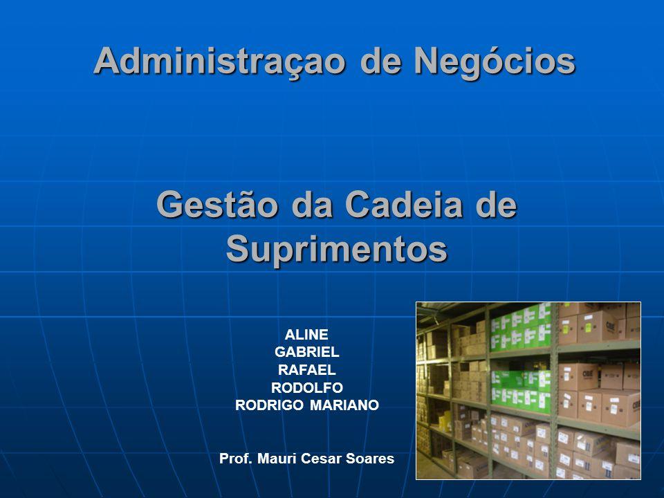 Administraçao de Negócios ALINE GABRIEL RAFAEL RODOLFO RODRIGO MARIANO Prof. Mauri Cesar Soares Gestão da Cadeia de Suprimentos
