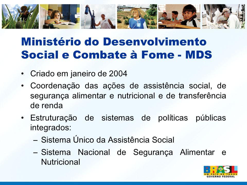 Ministério do Desenvolvimento Social e Combate à Fome - MDS Criado em janeiro de 2004 Coordenação das ações de assistência social, de segurança alimen