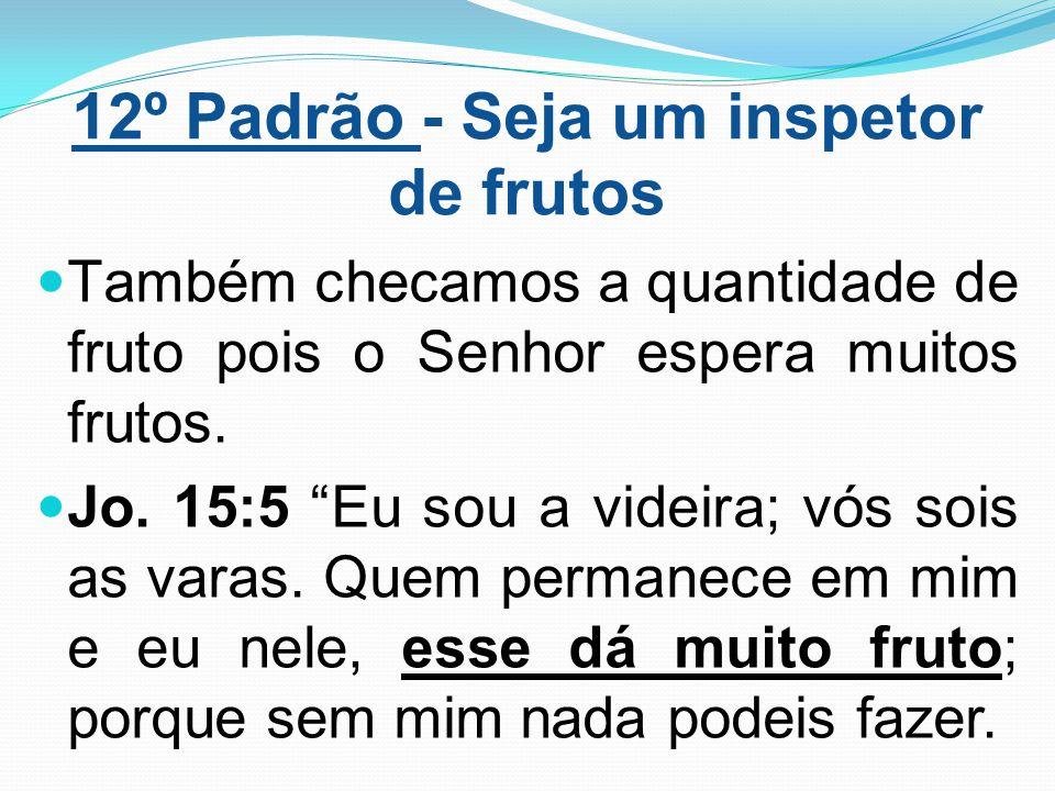 """12º Padrão - Seja um inspetor de frutos Também checamos a quantidade de fruto pois o Senhor espera muitos frutos. Jo. 15:5 """"Eu sou a videira; vós sois"""