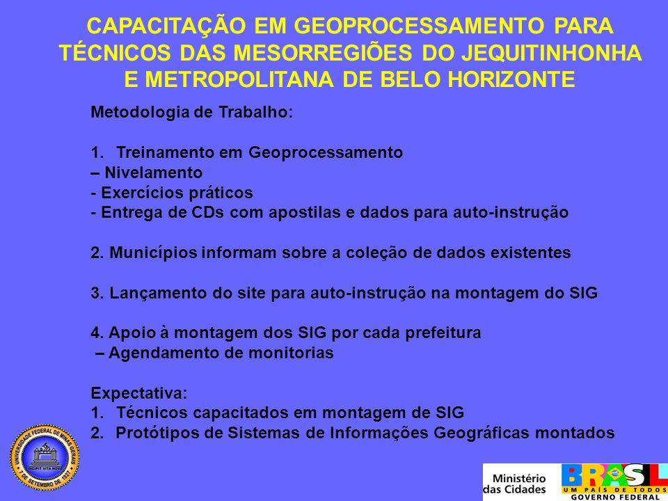 CAPACITAÇÃO EM GEOPROCESSAMENTO PARA TÉCNICOS DAS MESORREGIÕES DO JEQUITINHONHA E METROPOLITANA DE BELO HORIZONTE Metodologia de Trabalho: 1.Treinamento em Geoprocessamento – Nivelamento - Exercícios práticos - Entrega de CDs com apostilas e dados para auto-instrução 2.