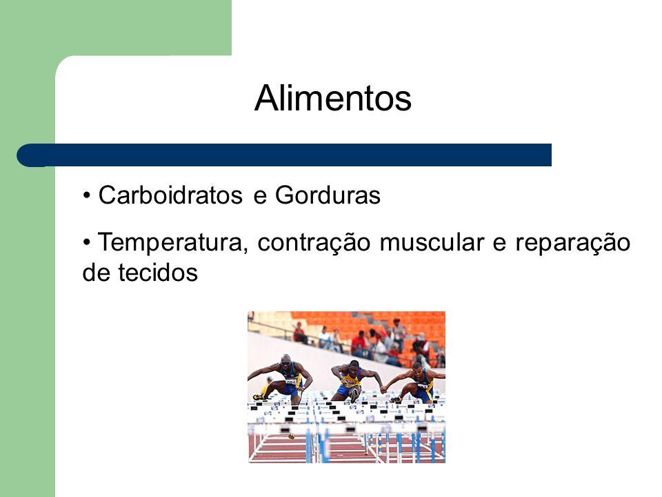 Alimentos Carboidratos e Gorduras Temperatura, contração muscular e reparação de tecidos
