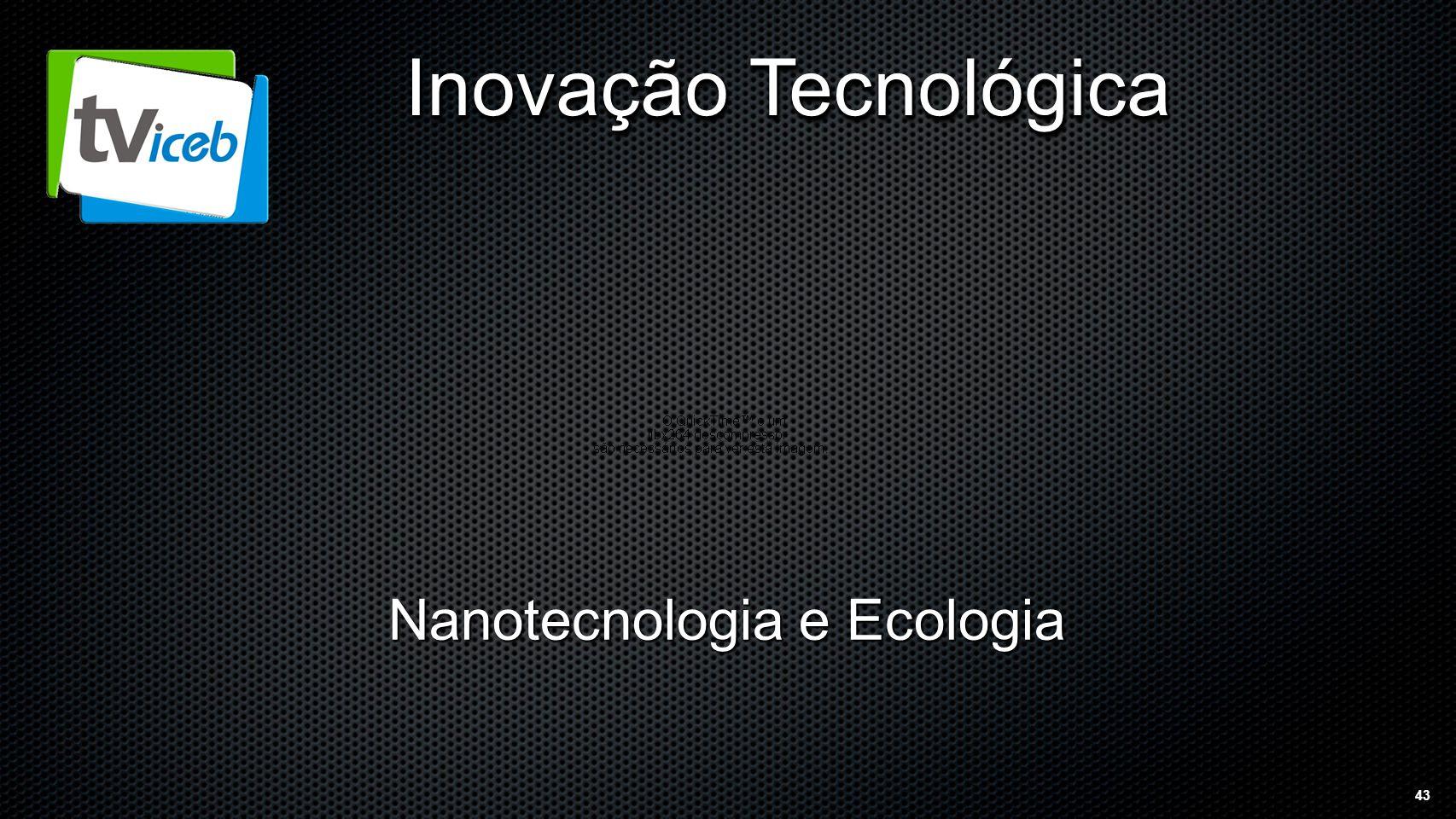 43 Inovação Tecnológica Nanotecnologia e Ecologia