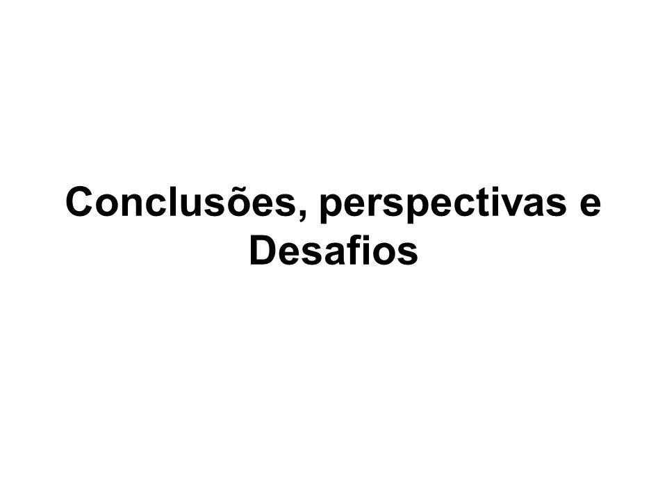 Conclusões, perspectivas e Desafios