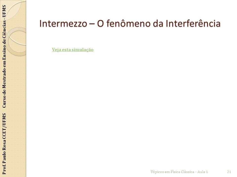 Prof. Paulo Rosa CCET/UFMS Curso de Mestrado em Ensino de Ciências - UFMS Intermezzo – O fenômeno da Interferência Tópicos em Física Clássica - Aula 1