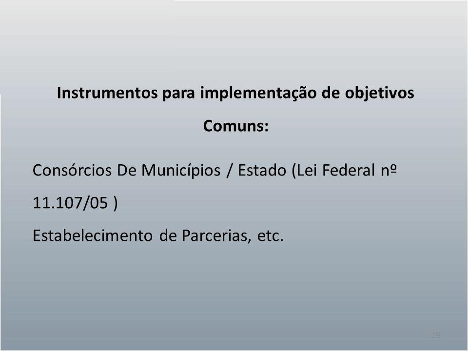 19 Instrumentos para implementação de objetivos Comuns: Consórcios De Municípios / Estado (Lei Federal nº 11.107/05 ) Estabelecimento de Parcerias, etc.