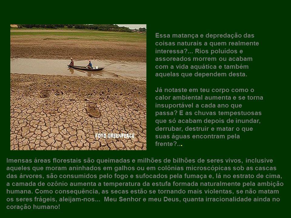 Em 2005 era desolador ver homens e animais procurando longe sem encontrar água para beber.