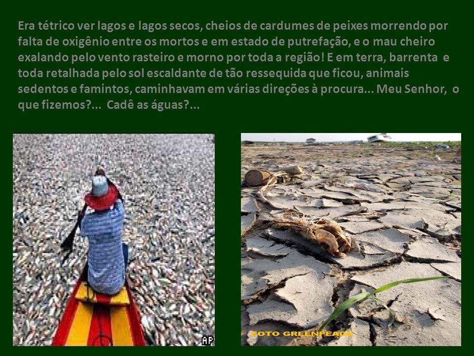 O texto deste trabalho é uma adaptação do elaborado em 2007, quando do lançamento da Campanha da Fraternidade: Tema: Fraternidade e Amazônia, Lema: Vida e Missão Neste Chão, sob o título Amazônia de Deus.