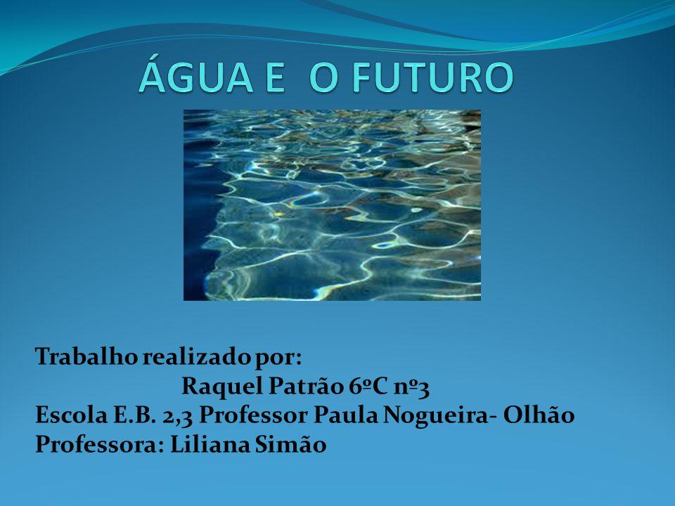 O Brasil é um dos países mais ricos em água potável, com mais de 25% de água potável.