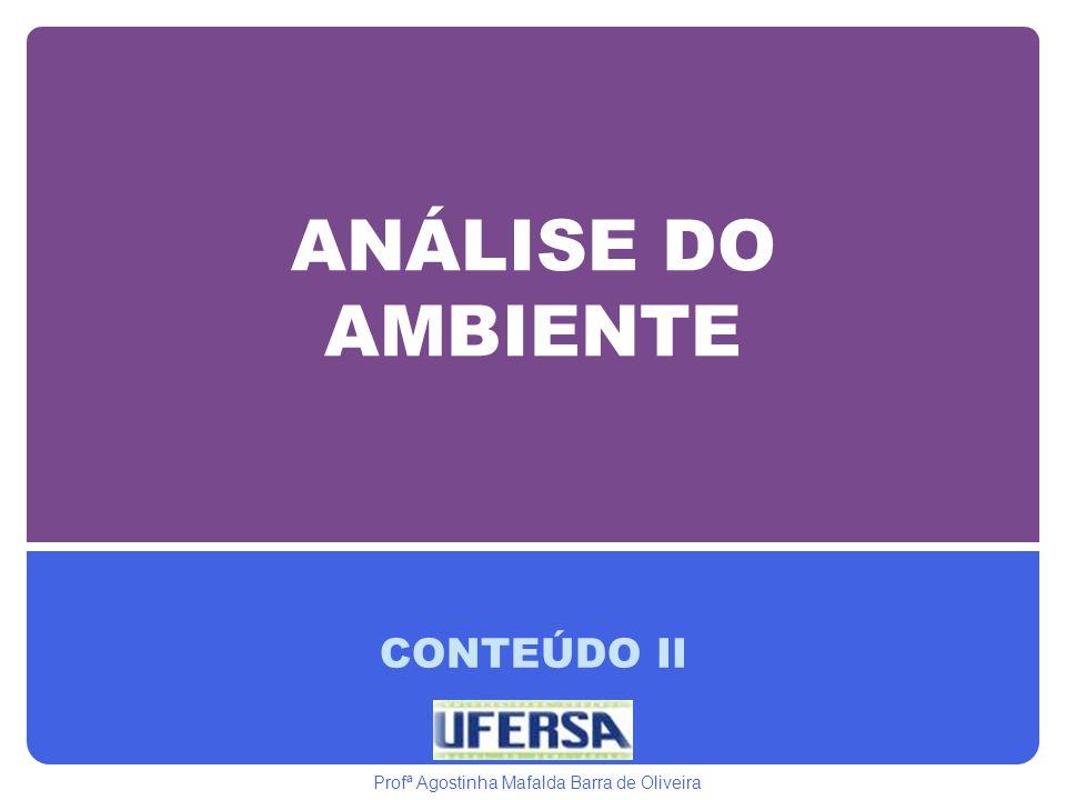 ANÁLISE DO AMBIENTE CONTEÚDO II Profª Agostinha Mafalda Barra de Oliveira