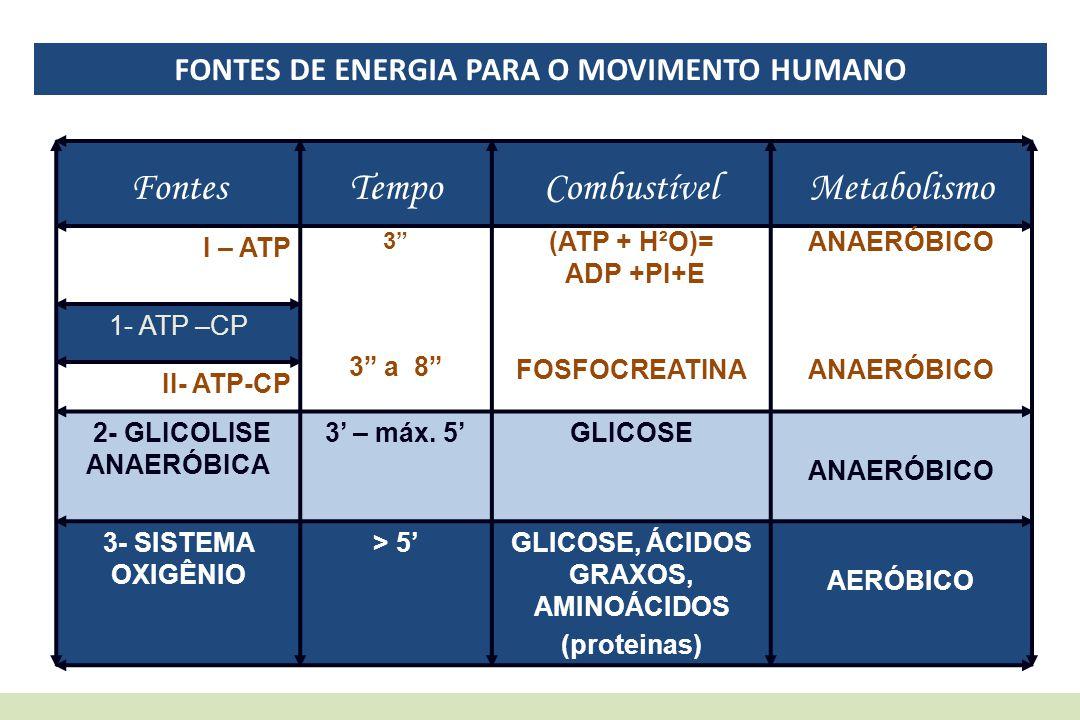 """FONTES DE ENERGIA PARA O MOVIMENTO HUMANO FontesTempoCombustívelMetabolismo I – ATP 3"""" 3"""" a 8"""" (ATP + H²O)= ADP +PI+E FOSFOCREATINA ANAERÓBICO 1- ATP"""