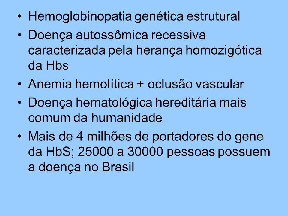 Hemoglobinopatia genética estrutural Doença autossômica recessiva caracterizada pela herança homozigótica da Hbs Anemia hemolítica + oclusão vascular Doença hematológica hereditária mais comum da humanidade Mais de 4 milhões de portadores do gene da HbS; 25000 a 30000 pessoas possuem a doença no Brasil