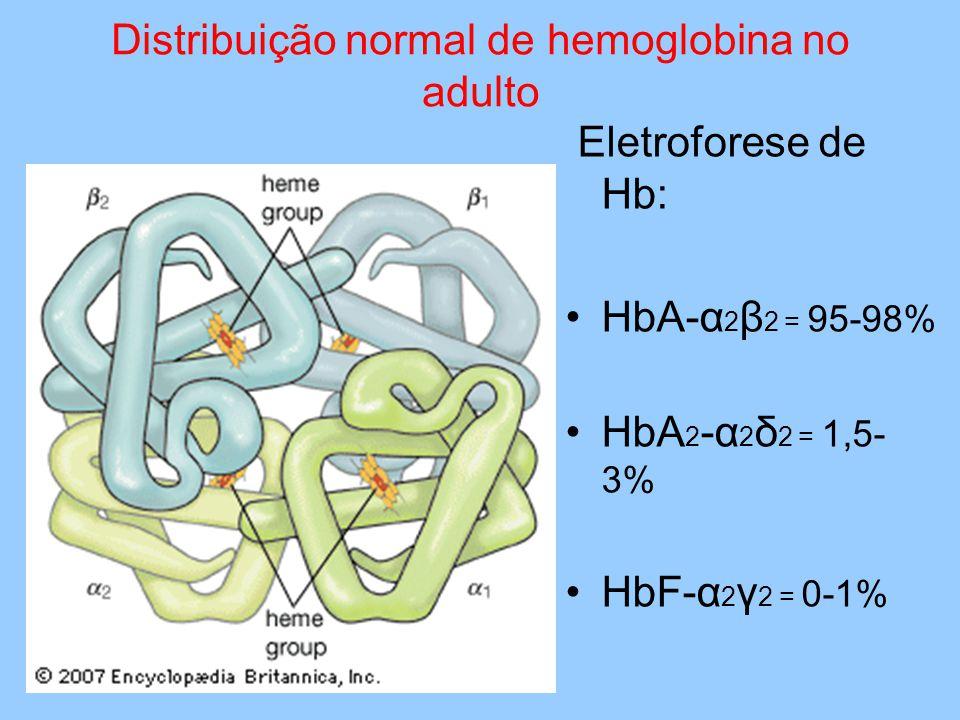 Distribuição normal de hemoglobina no adulto Eletroforese de Hb: HbA-α 2 β 2 = 95-98% HbA 2 -α 2 δ 2 = 1,5- 3% HbF-α 2 γ 2 = 0-1%