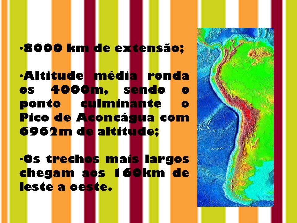 8000 km de extensão; Altitude média ronda os 4000m, sendo o ponto culminante o Pico de Aconcágua com 6962m de altitude; Os trechos mais largos chegam aos 160km de leste a oeste.