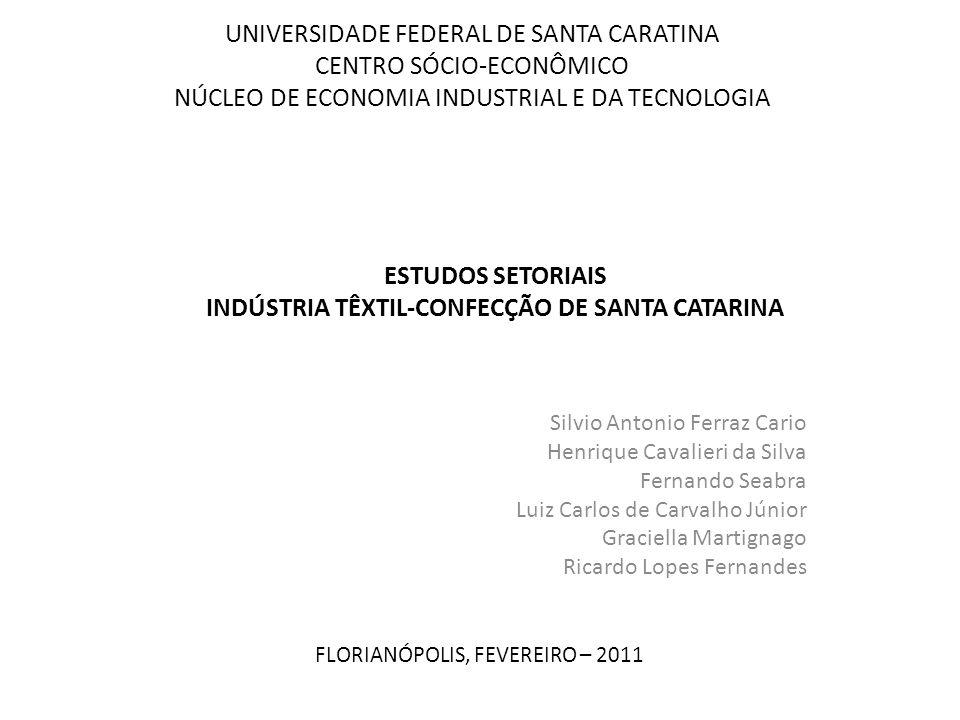 UNIVERSIDADE FEDERAL DE SANTA CARATINA CENTRO SÓCIO-ECONÔMICO NÚCLEO DE ECONOMIA INDUSTRIAL E DA TECNOLOGIA Silvio Antonio Ferraz Cario Henrique Caval