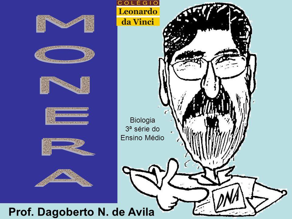 Prof. Dagoberto N. de Avila Biologia 3ª série do Ensino Médio