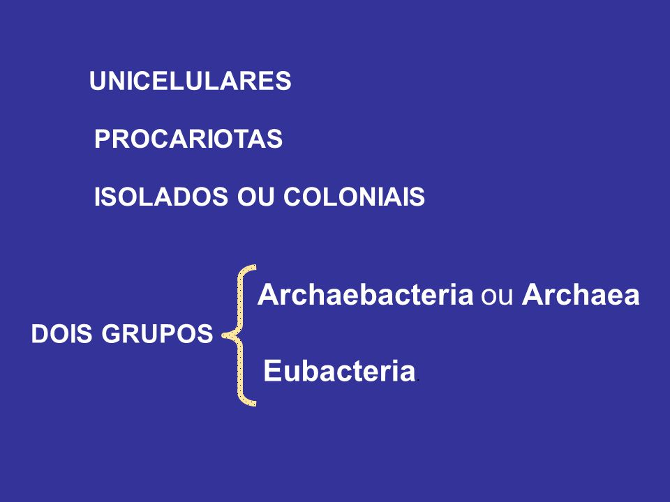 UNICELULARES PROCARIOTAS ISOLADOS OU COLONIAIS Eubacteria. DOIS GRUPOS Archaebacteria ou Archaea