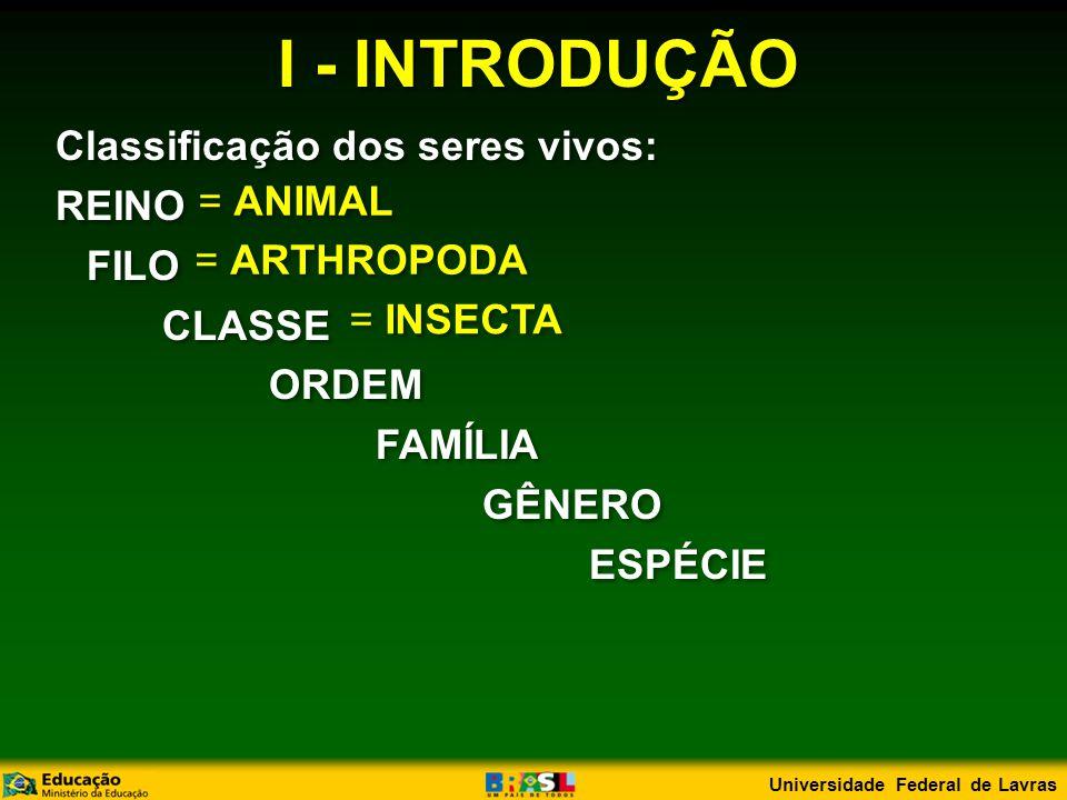 I - INTRODUÇÃO FILO Arthropoda