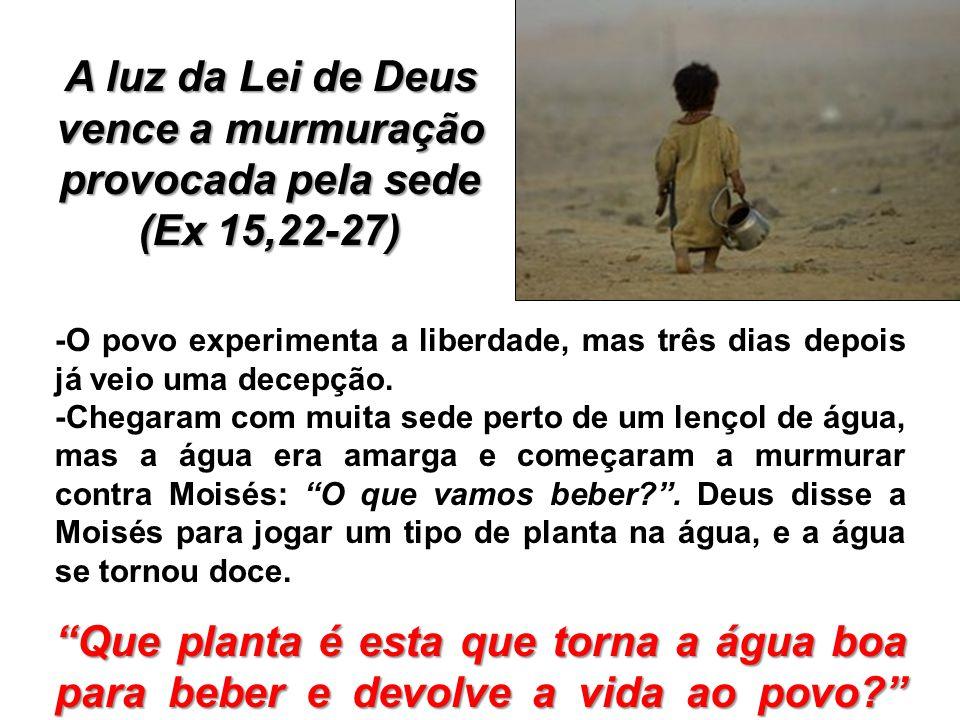 A luz da Lei de Deus vence a murmuração provocada pela sede (Ex 15,22-27) -O povo experimenta a liberdade, mas três dias depois já veio uma decepção.