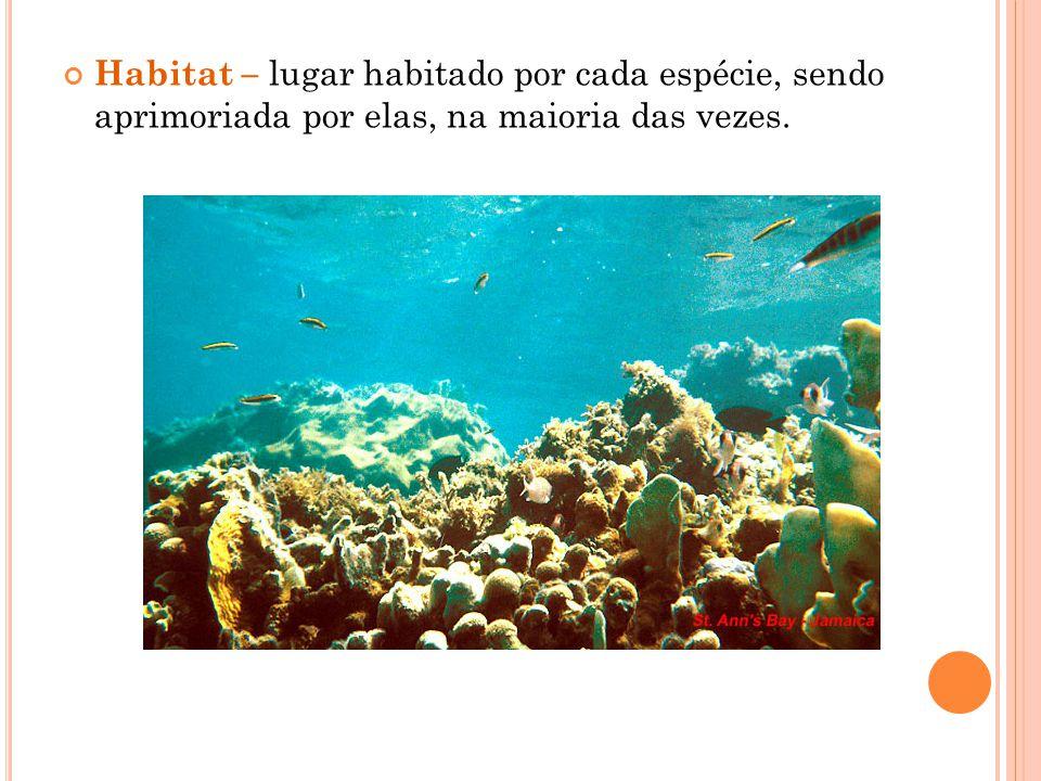 Habitat – lugar habitado por cada espécie, sendo aprimoriada por elas, na maioria das vezes.