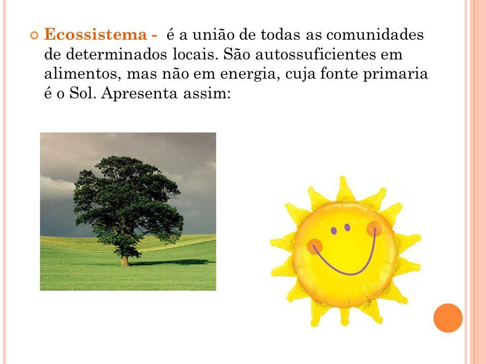 Ecossistema - é a união de todas as comunidades de determinados locais. São autossuficientes em alimentos, mas não em energia, cuja fonte primaria é o