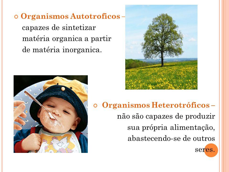 Organismos Autotroficos – capazes de sintetizar matéria organica a partir de matéria inorganica. Organismos Heterotróficos – não são capazes de produz