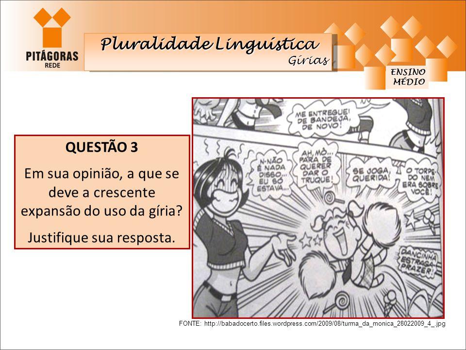 ENSINO MÉDIO MÉDIO Pluralidade Linguística Gírias Gírias QUESTÃO 3 Em sua opinião, a que se deve a crescente expansão do uso da gíria? Justifique sua