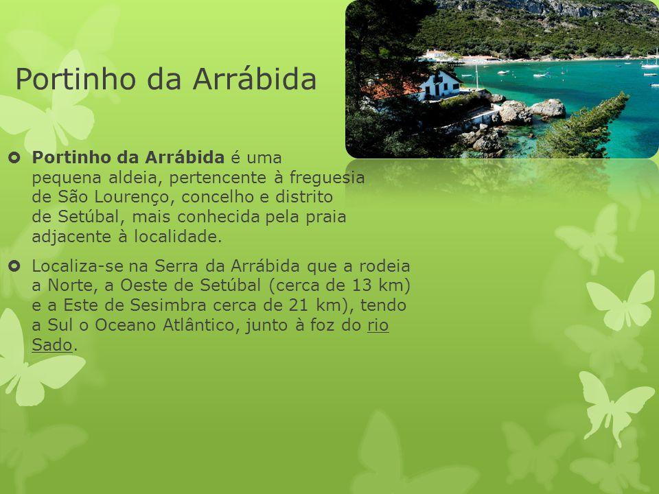 Portinho da Arrábida  Portinho da Arrábida é uma pequena aldeia, pertencente à freguesia de São Lourenço, concelho e distrito de Setúbal, mais conhec